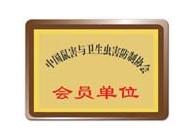 荣誉证书 (1)